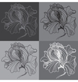 print with four graphic monochrome flowers vector image vector image