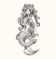 tattoo mermaid in vintage style vector image vector image
