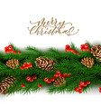christmas border with berry pine cone vector image vector image