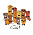 Colorful With Group Of Smiliing Meerkats vector image vector image