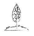 figure natual and ecological tree with branches vector image
