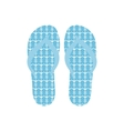 Flip flops Slippers with anchors pattern on blue vector image