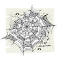 Halloween spider web background vector image