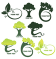 leaf and tree vector image vector image