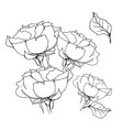 rose bouquet liner on white vector image