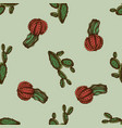 seamless pattern with hand drawn colored cactus vector image