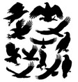 silbouettes eagles flying hunting and other vector image