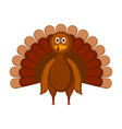 isolated colored turkey icon vector image vector image