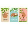 lazy sloth cute slumbering sloths on branch vector image vector image