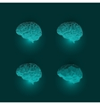Set of Active Human Brains on Dark Background vector image vector image