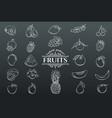 hand drawn fruits icons set vector image