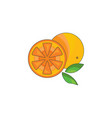 color orange icon on a white vector image
