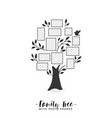 family tree with photo frames vector image vector image