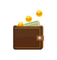 golden coins falling and wallet with dollars bank vector image