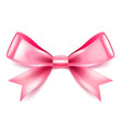 pink bow isolated on white vector image vector image