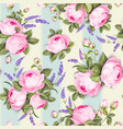 provece lavender and pink roses floral wallpaper vector image