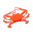 red cooked crab icon isolated on white background vector image vector image