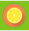 Citrus fruit lemon icon vector image vector image