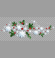 decoration with snowflakes and holly vector image
