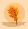 dry leaves design vector image