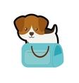 puppy little portrait lovely blue pet carrier bag vector image