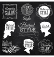 Beauty salon chalk vector image
