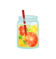 fresh detox drink with slices of grapefruit lemon vector image vector image