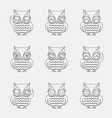 group of owls vector image vector image