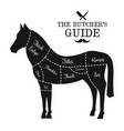 horse meat cut lines diagram graphic poster guide vector image vector image