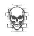 skull on brick wall tattoo vector image vector image