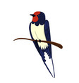swallow sitting on a branch isolated on a white vector image
