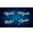 words of thanks design vector image