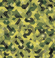 Abstract background camouflage style vector image vector image