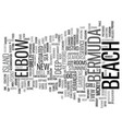 elbow beach in bermuda text background word cloud vector image vector image