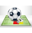Football field with footballs set vector image