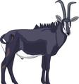 goat v vector image
