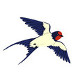 swallow in flight isolated on a white background vector image