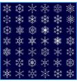 Set of decorative winter snowflakes vector image