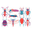 colorful insects set cute butterfly beetle bug vector image vector image