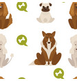 dog types and breeds canine animals seamless vector image vector image