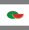 fresh and juicy whole watermelon and slice vector image