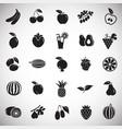 fruits set on white background vector image