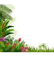plant tropical on isolated background vector image vector image