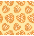 Seamless pattern with hand drawn decorative vector image vector image