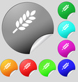 Wheat Ears Icon sign Set of eight multi colored vector image vector image