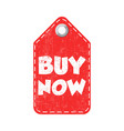buy now hang tag vector image vector image