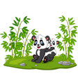 cartoon mom and bapanda in bamboo tree vector image vector image