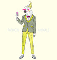 fashion animal parrot dressed up in vintage style vector image vector image