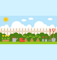 gardening background in flat design us as vector image