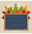Maple leaves and grey chalkboard vector image vector image